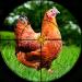 Chicken Hunting 2019 – Real Chicken Shooting games v4.5.6 [MOD]